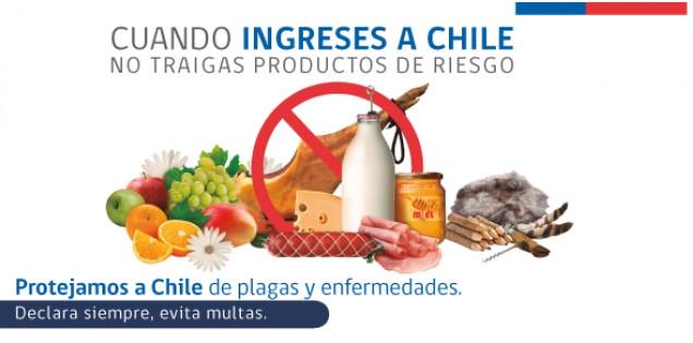 Déclaration douane Chili