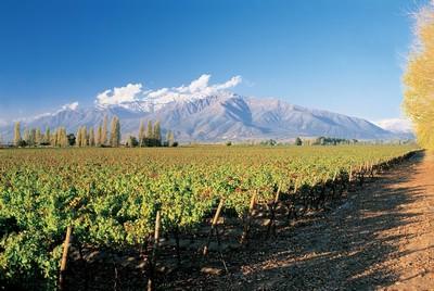 Valle de l'Aconcagua